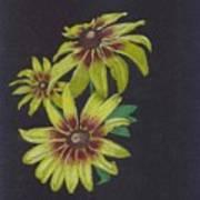 Gloriosa Daisy Art Print