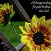 God's Creation Art Print