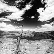Grand Canyon Landscape Art Print