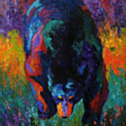 Grounded - Black Bear Art Print