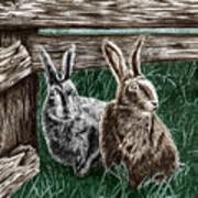 Hare Line  Art Print