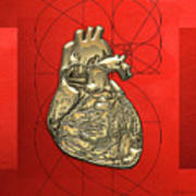 Heart Of Gold - Golden Human Heart On Red Canvas Art Print
