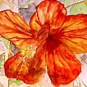 Hibiscus 2 Art Print