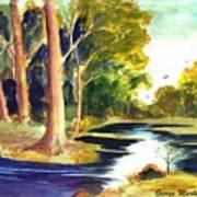 Hidden Glade Art Print