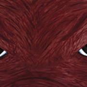 Hog Eyes Print by Amy Parker
