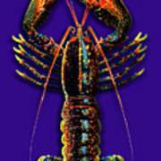 Homarus Vulgaris Flying On The Purple Art Print