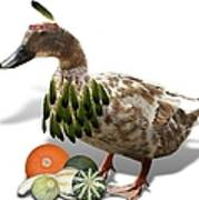Indian Duck Art Print