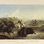 Indians Hunting The Bison Art Print