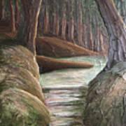 Into The Woods II Art Print