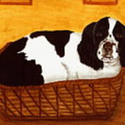 Jd In The Cat Bed Art Print