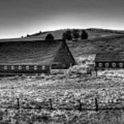 Johnson Road Barns Art Print