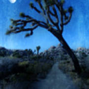 Joshua Trees At Night Art Print