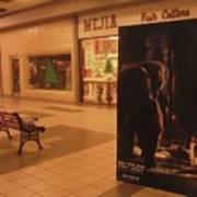 King Kong Remake Poster Mall Casa Grande Arizona Christmas 2005 Art Print