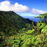 Koolau Summit Trail Art Print