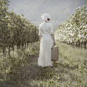 Lady In Vineyard Art Print