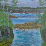 Lake Okahumpka Park Art Print