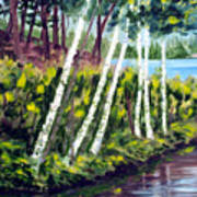 Lakeside Birches Art Print