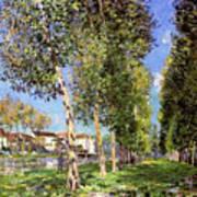 Lane Of Poplars At Moret Art Print