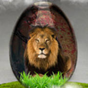 Lion Art Art Print