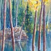 Little Mountain Beaver Pond 04 Art Print