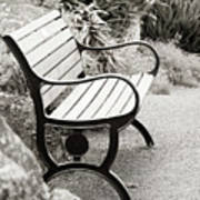 Lone Bench In The Park. Art Print