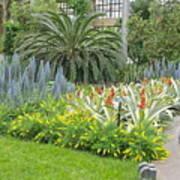 Longwood Gardens Conservatory  Art Print