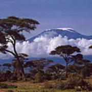 Majestic Mount Kilimanjaro Art Print