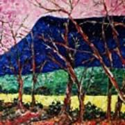 Massanutten Peak Awaiting Spring Art Print
