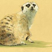 Meerkat Or Suricate Painting Art Print