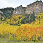 Million Dollar Highway Aspens Art Print
