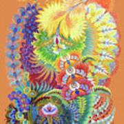 Morning Sunny Wave Art Print