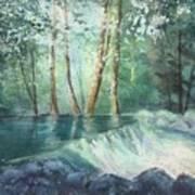 Mosquito Creek 2 Art Print