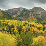 Mount Timpanogos Fall Colors Art Print