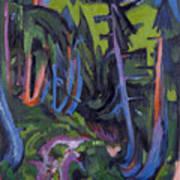 Mountain Forest Path Art Print