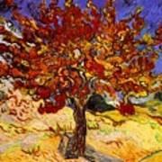 Mulberry Tree Art Print