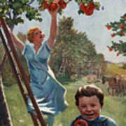 National Apple Week Art Print