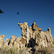 Natural Rock Formation And Wild Birds At Mono Lake, Eastern Sier Art Print