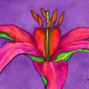 Neon Lily Art Print