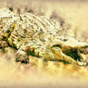 Nile River Crocodile Art Print