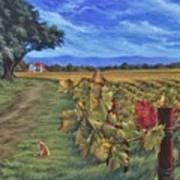 November Vineyard Art Print