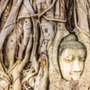 Old Bangkok Ruins Art Print