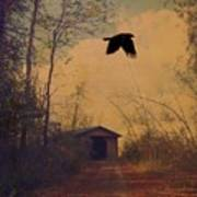 Lone Crow Flies Over The Old Country Road  Art Print