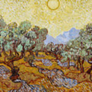 Olive Trees With Yellow Sky And Sun Art Print