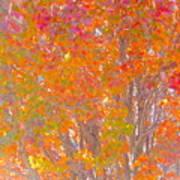 Orange And Red Autumn Art Print