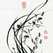 Orchid - 31 Art Print