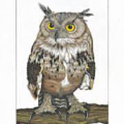 Owl In Pose Art Print