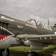 P - 40 Warhawk Art Print