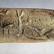 Paleolithic Tool Art Print