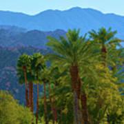 Palm Springs Mountains Art Print