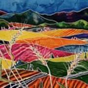 Palouse Fields Art Print by Carolyn Doe